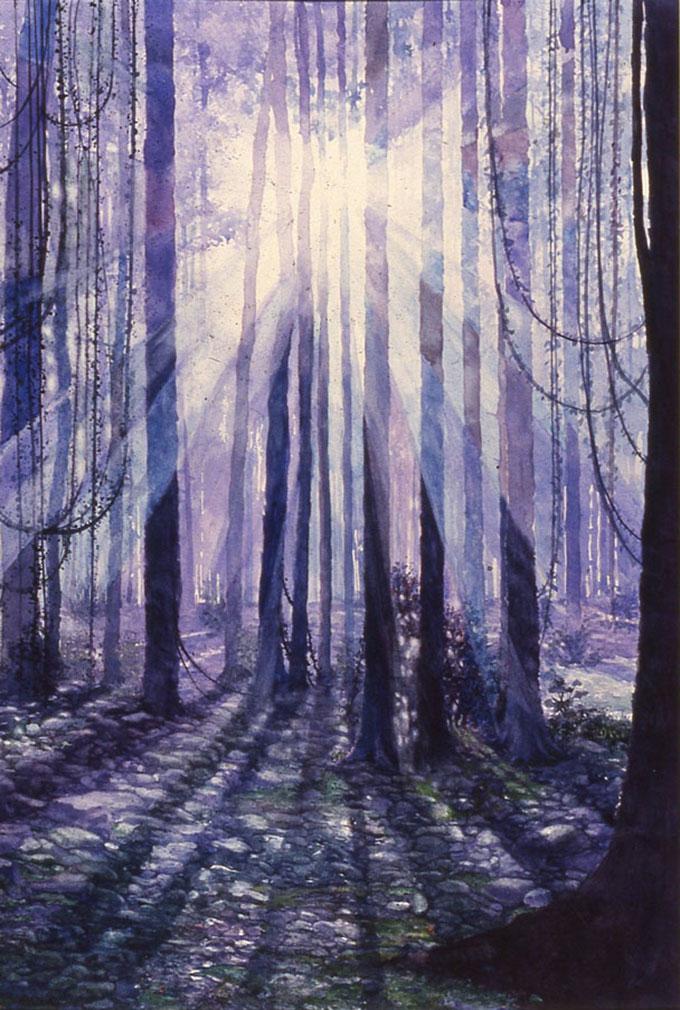 Effton-Mitchell-Rain-Forest_25.5X17-608X903
