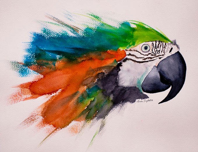 Linda-Sue-Campbell-Blue-And-Gold-Macaw-608X468