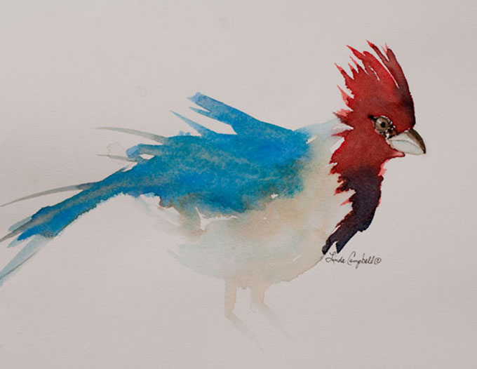 Linda-Sue-Campbell-Red-Crested-Cardinal-608X470