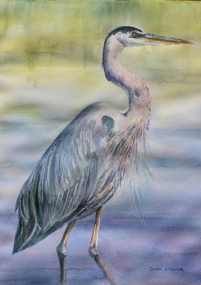 Marsh Wader by Donna Littleton